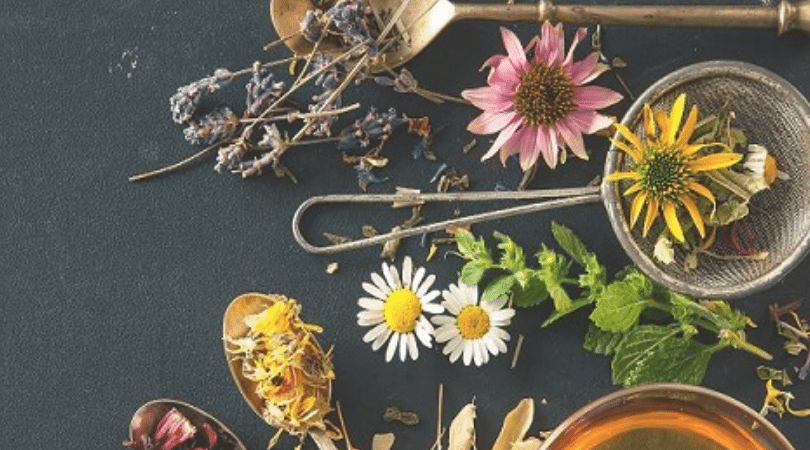 Naturopath appointments online